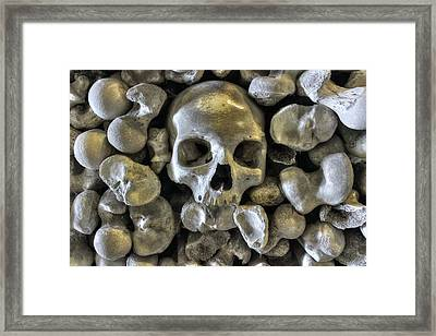 Good Bonesstructure Framed Print by Ian Hufton