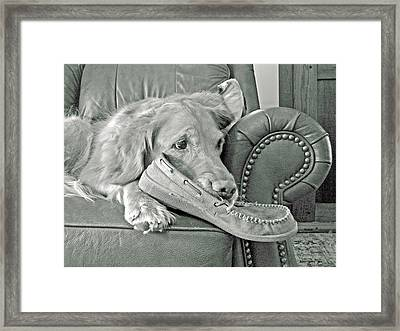 Good Day To Be On The Couch With My Slippers Framed Print