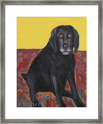 Good Dog Series 2 Framed Print by Jennifer Boswell
