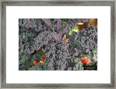 Good Food On The Wall Framed Print