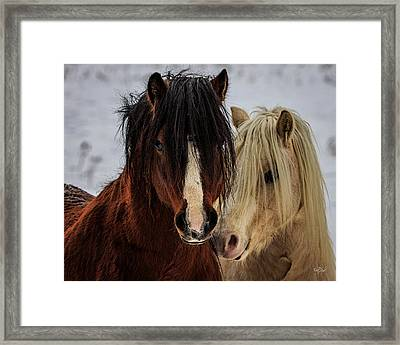 Good Friends Framed Print by Everet Regal