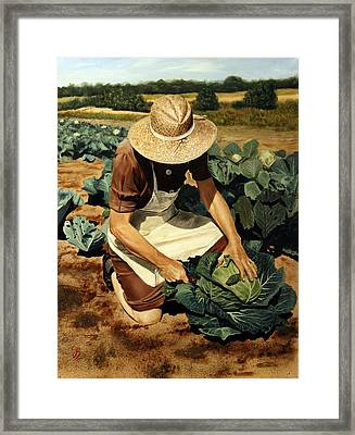 Good Harvest Framed Print by Glenn Beasley