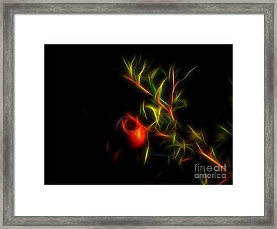 Good Luck 2 Framed Print by Vassilis Tagoudis