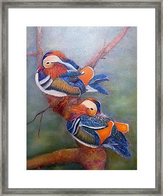 Good Luck Mandarins Framed Print by Loretta Luglio