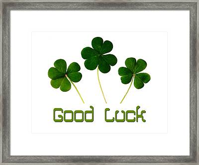 Good Luck Poster Framed Print