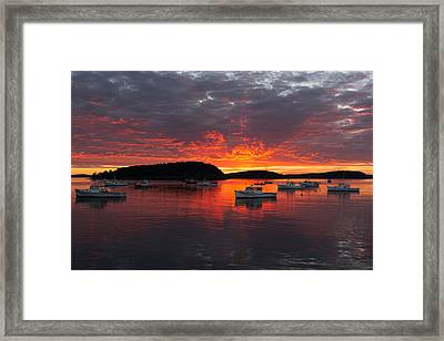 Good Morning Acadia Framed Print by Bernard Chen