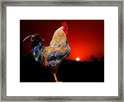 Good Morning Framed Print by Carlos Vieira