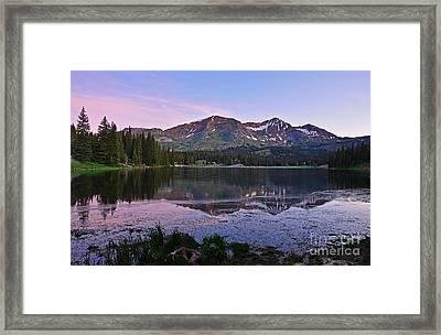 Good Morning Irwin Framed Print