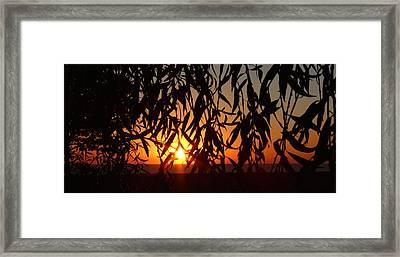 Good Morning Lake Michigan Framed Print