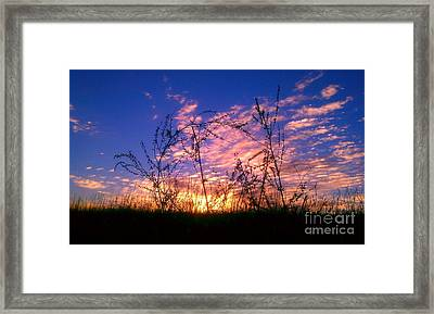 Framed Print featuring the photograph Good Morning Laramie by Chris Tarpening