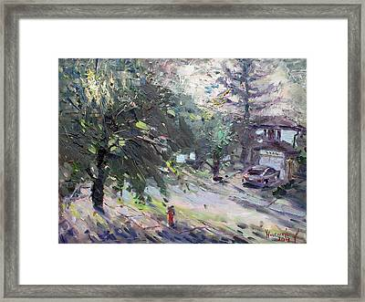 Good Morning Neighbor Framed Print by Ylli Haruni