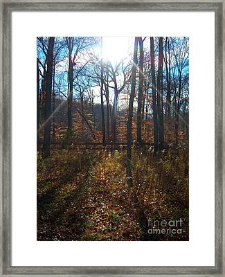 Framed Print featuring the photograph Good Morning by Pamela Clements