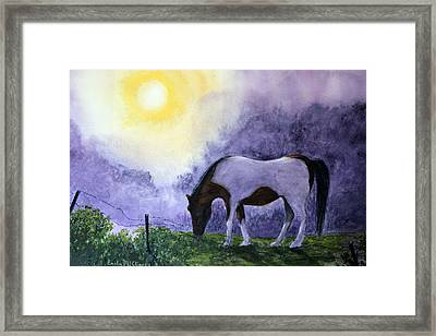 Good Morning Patches Framed Print by Enola McClincey