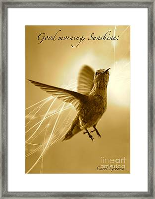 Good Morning Sunshine Framed Print by Carol Groenen