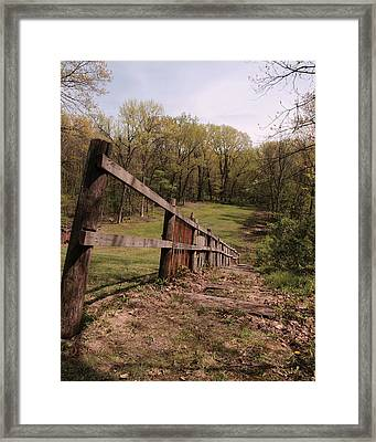 Good Nature Framed Print by Tom Druin