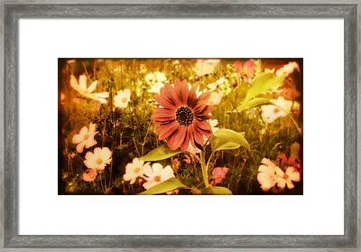 Vintage Cottage Garden Framed Print