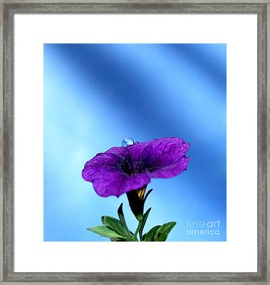 Good To Be Alive Framed Print by Krissy Katsimbras