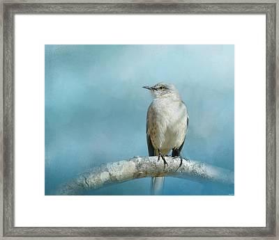 Good Winter Morning Framed Print