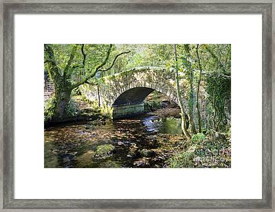 Goodameavy Bridge Dartmoor Framed Print by Donald Davis