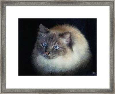 Goodbye Cornelia Framed Print by Gun Legler
