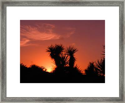 Goodevening Star Shine Framed Print