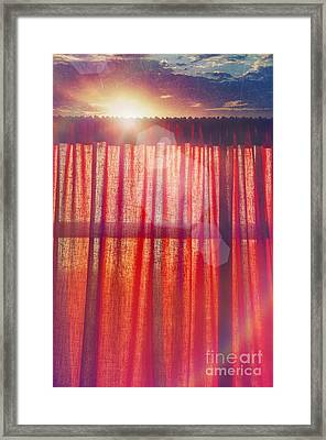Goodmorning Sunshine Framed Print