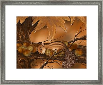 Goodnight Baby Squirrel Framed Print by Veronica Minozzi