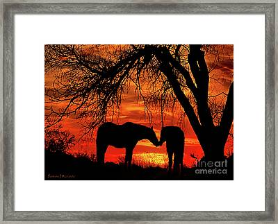 Goodnight Kiss Framed Print by Barbara D Richards
