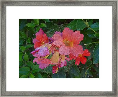 Goodnight With Love And Flowers  Framed Print by Kenneth James