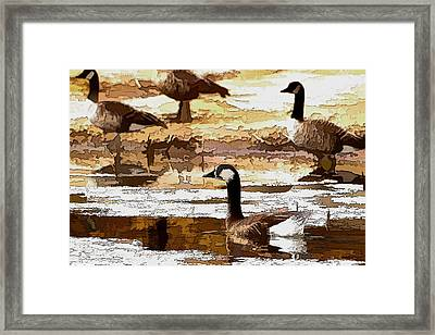 Goose Abstract Framed Print