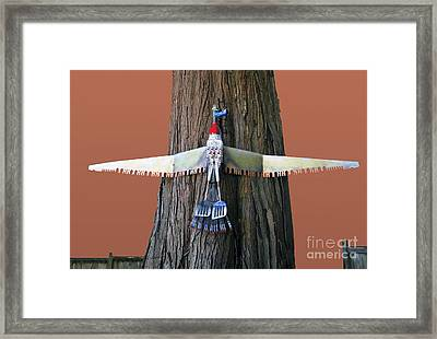 Goose Framed Print by Bill Thomson
