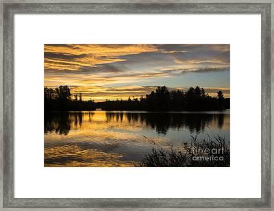 Goose Island Framed Print