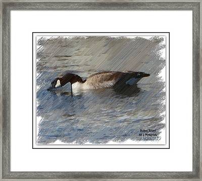 Goosey Lucy Painting Framed Print by Bobbee Rickard