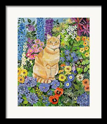 Furry Felines Paintings Framed Prints
