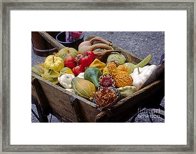 Gords And Tomatoes Provence Framed Print by Craig Lovell