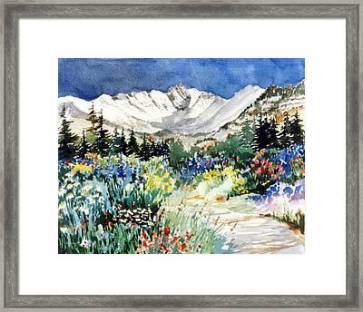 Gore Range Trail Framed Print by Patty  Frierson