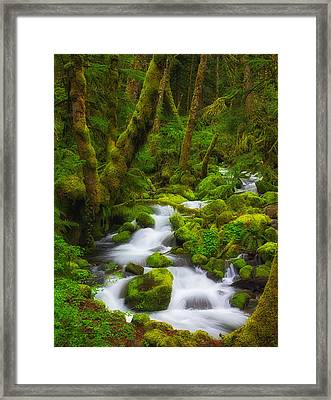 Gorge Greens Framed Print by Darren  White