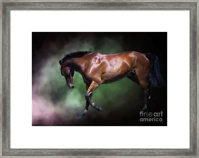 Gorgeous George Framed Print by Wobblymol Davis