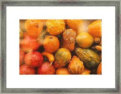 Framed Print featuring the photograph Gorgeous Gourds by Ira Shander