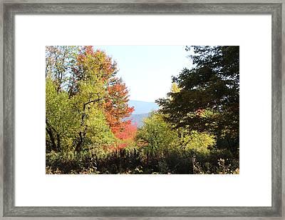 Gorgeous Vermont Framed Print by William Alexander