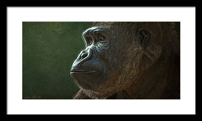 Gorilla Framed Prints
