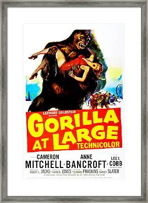 Gorilla At Large, Us Poster, Anne Framed Print