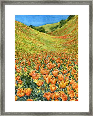 Gorman Framed Print by Karen Wright