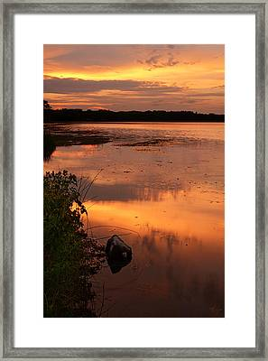 Gorton Pond Warwick Rhode Island Framed Print by Lourry Legarde