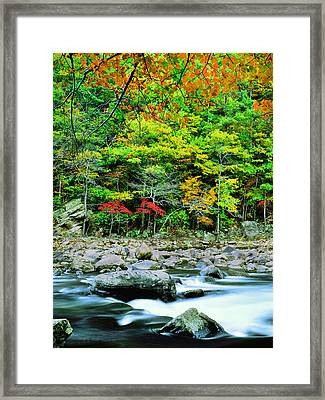 Goshen Pass And Maury River Framed Print by Bijan Pirnia