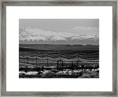 Gossamer Threads Framed Print