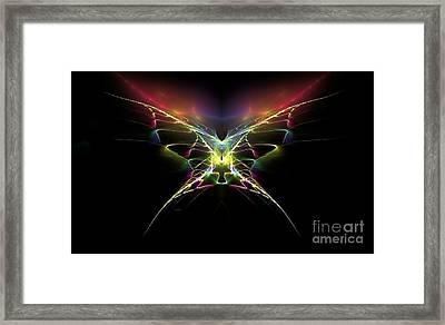 Gossamer Wings Framed Print by Greg Moores