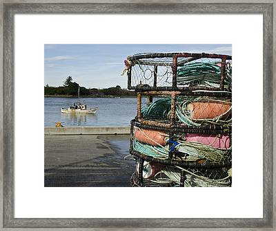Got Crab? Framed Print