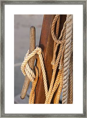 Got Enough Rope  Framed Print by Eugene Bergeron