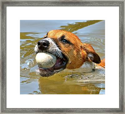 Framed Print featuring the photograph Got It by Barbara Dudley